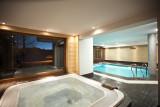 piscine-jacuzzi-calagary-11195090