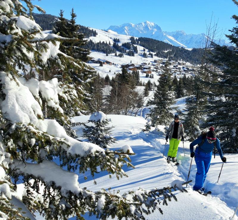 photo-ski-raquette-anne-marie-11177705